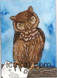 Owl card by IceKat