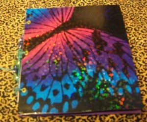 Butterfly Book for Chels